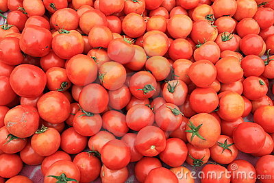 tomatoes in the supermarket