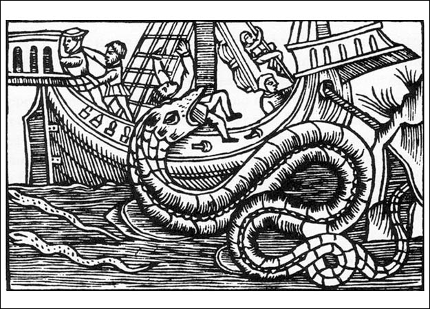 olaus-magnus-sea-serpent
