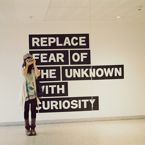 "quote ""replace fear of the unknown with curiosity"""