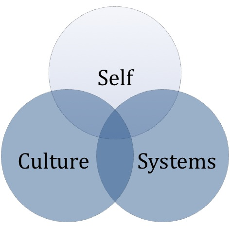 systems-culture